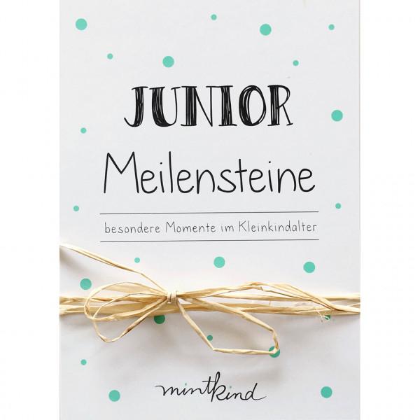 Meilensteine Karten Junior